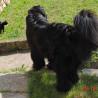 Návštěva u Ebinky 28.8.2011