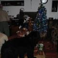 Krásné Vánoce 2011